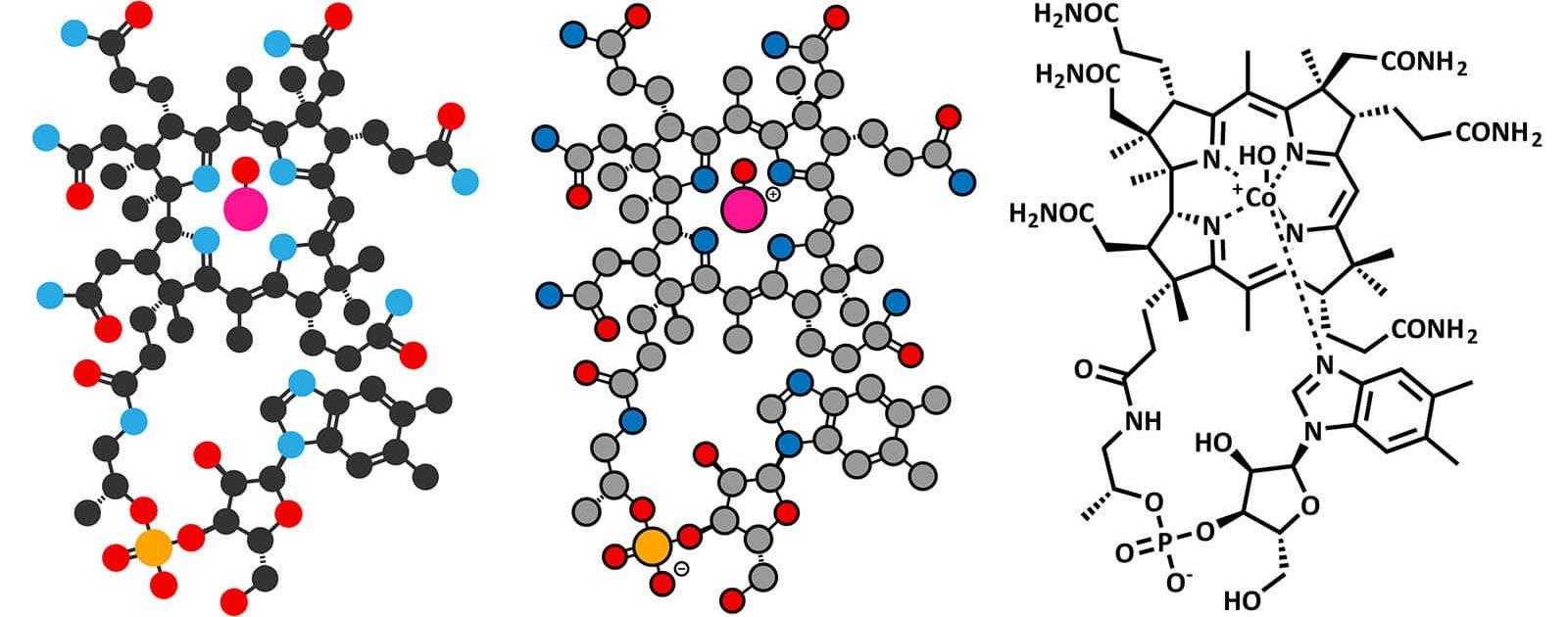 Chemische Struktur des intrinischen Faktors, der für die Vitamin B12 Aufnahme zuständig ist.